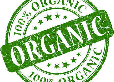 How to Leverage Organic Search to Elevate Your Business